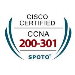 Cisco CCNA 200-301 Certification Exam Dumps