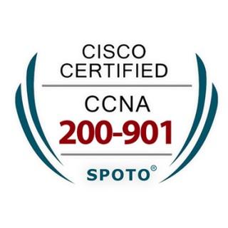 CCNA DevNet Associate 200-901 Exam Dumps