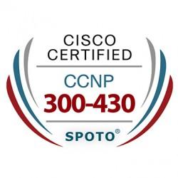 Cisco CCNP Enterprise 300-430 ENWLSI Exam Dumps