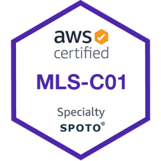 AWS Machine Learning - Specialty (MLS-C01) Dumps