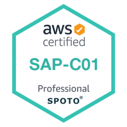 AWS Certified Solutions Architect-Professional (SAP-C01) Dumps