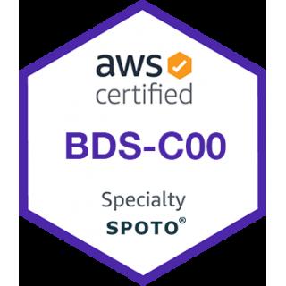AWS Certified Big Data-Specialty (BDS-C00) Exam Dumps
