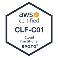 AWS Cloud Practitioner (CLF-C01) Exam Dumps