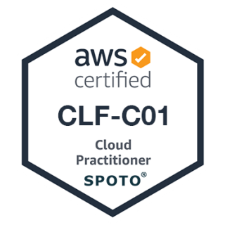 AWS Cloud Practitioner (CLF-C01) Exam Dumps