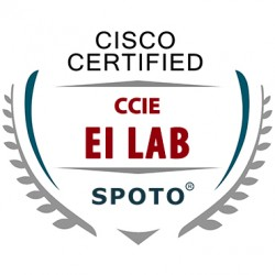 Cisco CCIE Enterprise Infrastucture LAB Exam Theory Training