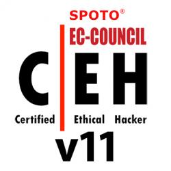 Certified Ethical Hacker v11 Exam Dump